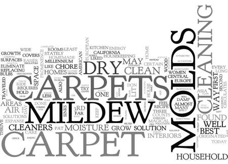 mildew: BEST CARPET CLEANERS ADVICE KEEP DRY BID MOLDS GOODBYE TEXT WORD CLOUD CONCEPT
