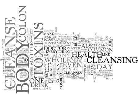 WHOLE BODY CLEANSE TEXT WORD CLOUD CONCEPT Illustration