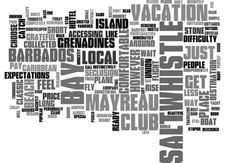 WHY CHOOSE THE SALTWHISTLE BAY CLUB ON MAYREAU IN THE GRENADINES TEXT WORD CLOUD CONCEPT Ilustrace