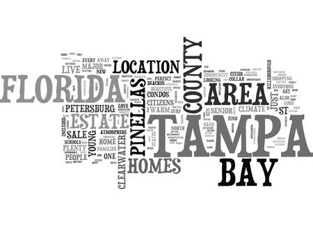 WHAT WE LOVE ABOUT TAMPA BAY FLORIDA TEXT WORD CLOUD CONCEPT Ilustração