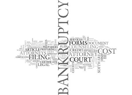 WHAT WILL IT COST TO FILE BANKRUPTCY TEXT WORD CLOUD CONCEPT