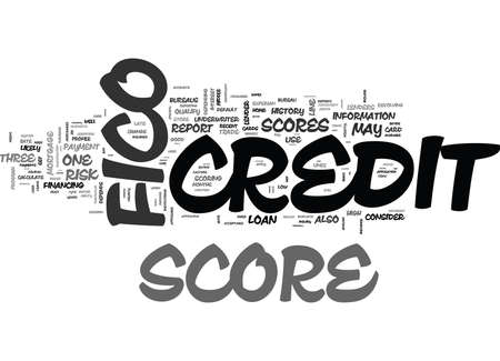 YOU AND YOUR FICO SCORE TEXT WORD CLOUD CONCEPT