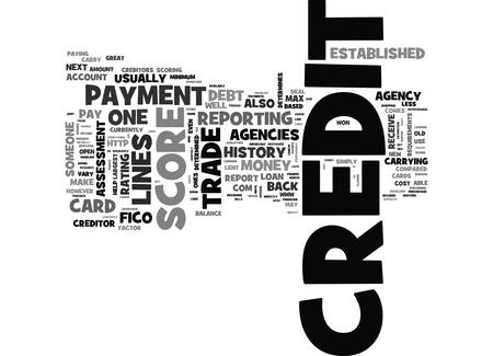 WHAT IS CREDIT AND HOW IS IT ESTABLISHED TEXT WORD CLOUD CONCEPT