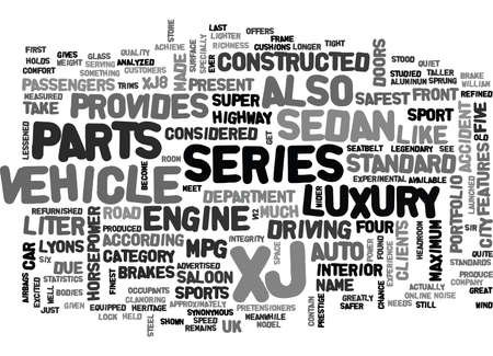 sprung: WHEN WHAT YOU SEE IS WHAT YOU GET TEXT WORD CLOUD CONCEPT Illustration