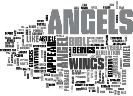 WHAT DO ANGELS LOOK LIKE TEXT WORD CLOUD CONCEPT