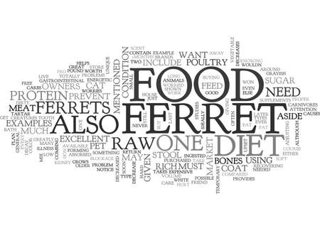 WHAT DO FERRETS EAT TEXT WORD CLOUD CONCEPT