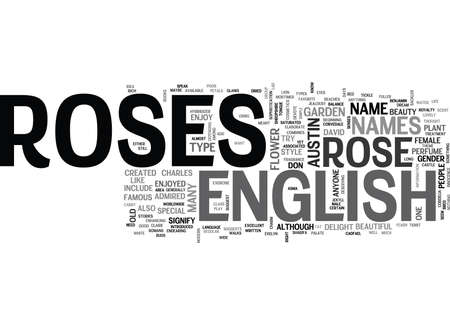 WHAT DO YOU KNOW ABOUT THE ENGLISH ROSE TEXT WORD CLOUD CONCEPT