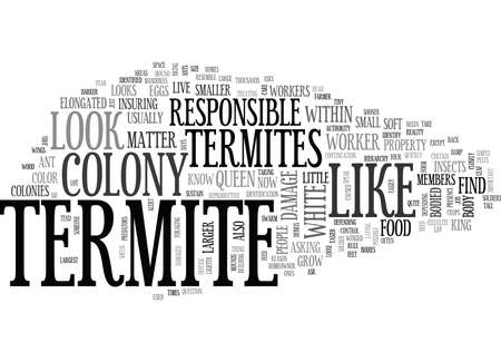 WHAT DOES A TERMITE LOOK LIKE TEXT WORD CLOUD CONCEPT Иллюстрация