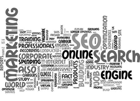 WHY SHOULD I CONSIDER A CAREER IN SEO TEXT WORD CLOUD CONCEPT