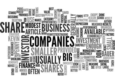 WHY SHOULD I USE PENNY SHARES TO BUILD WEALTH TEXT WORD CLOUD CONCEPT Ilustrace