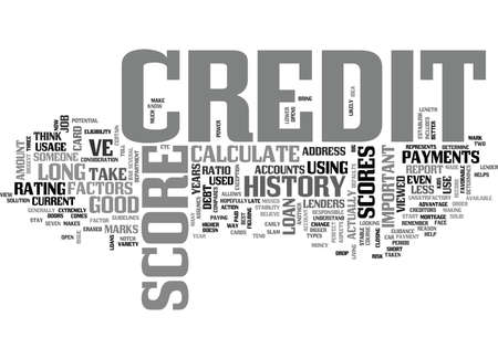 WHAT FACTORS ARE USED TO CALCULATE CREDIT SCORES TEXT WORD CLOUD CONCEPT Illustration