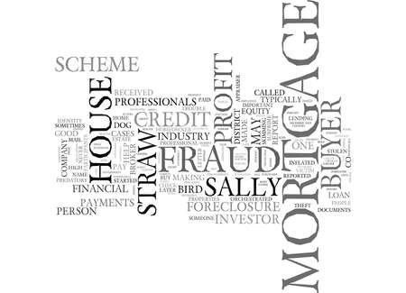 WHAT IS MORTGAGE FRAUD FOR PROFIT TEXT WORD CLOUD CONCEPT