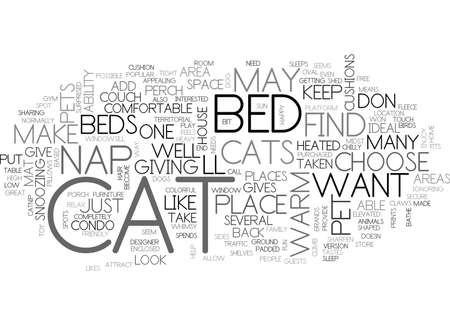 WHERE DOES YOUR CAT NAP MAKE HIM AS COMFORTABLE AS POSSIBLE TEXT WORD CLOUD CONCEPT