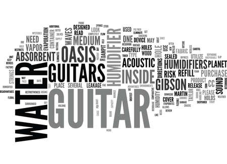 WHAT TO LOOK FOR IN A GUITAR HUMIDIFIER TEXT WORD CLOUD CONCEPT