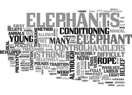 WHAT YOU HAVE IN COMMON WITH ELEPHANTS TEXT WORD CLOUD CONCEPT