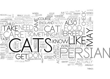 stinks: WHAT YOU NEED TO KNOW ABOUT PERSIAN CAT CARE TEXT WORD CLOUD CONCEPT Illustration