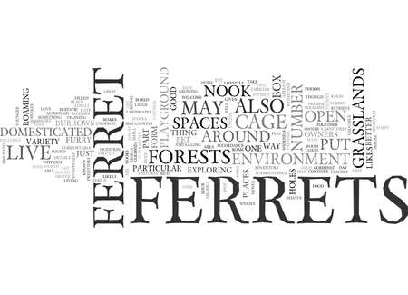 WHERE DO FERRETS LIVE TEXT WORD CLOUD CONCEPT