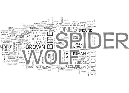 WOLF SPIDER TEXT WORD CLOUD CONCEPT Illustration