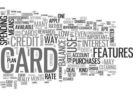 WHICH KIND OF CREDIT CARD SHOULD I CHOOSE TEXT WORD CLOUD CONCEPT Ilustrace