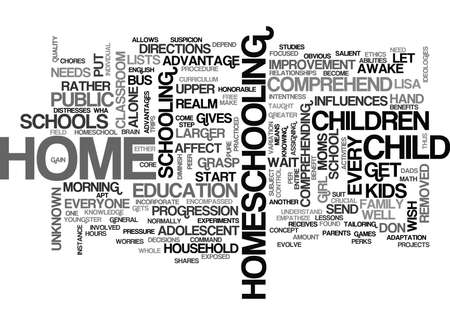 homeschooling: WHY HOME SCHOOL TEXT WORD CLOUD CONCEPT Illustration
