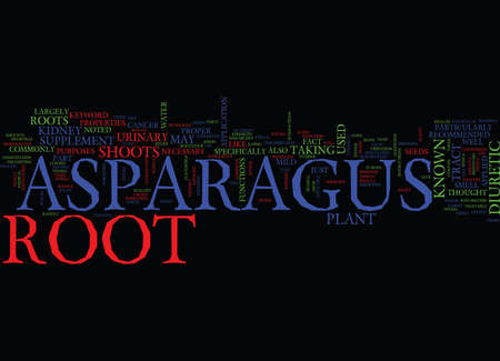 ASPARAGUS ROOT Text Background Word Cloud Concept