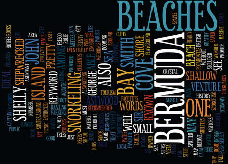 BEACON CREDIT SCORE LENDERS BACKGROUND CHECK Text Background Word Cloud Concept