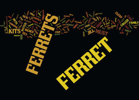 ARTICLE ON FERRETS Text Background Word Cloud Concept Illustration