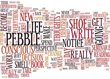 FIGURE OUT THE PEBBLE IN YOUR SHOE Text Background Word Cloud Concept