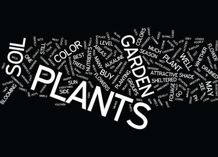 BESTPLANTS Text Background Word Cloud Concept