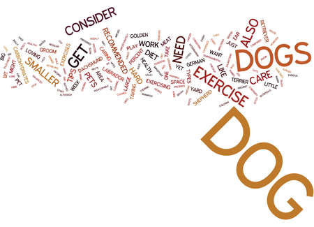 ESSENTIAL CARE TIPS FOR YOUR DOG Text Background Word Cloud Concept