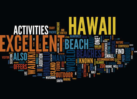 ENJOY EXCELLENT BEACHES IN HAWAII Text Background Word Cloud Concept Illustration