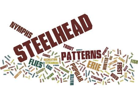 ERIE STEELHEAD FLIES Text Background Word Cloud Concept Ilustração