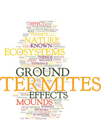 EFFECTS ON ECOSYSTEMS BY GROUND TERMITES Text Background Word Cloud Concept