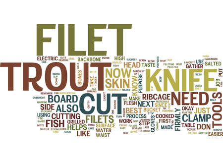ready cooked: FILET TROUT FILET FISH NO BONES NO SKIN Text Background Word Cloud Concept Illustration