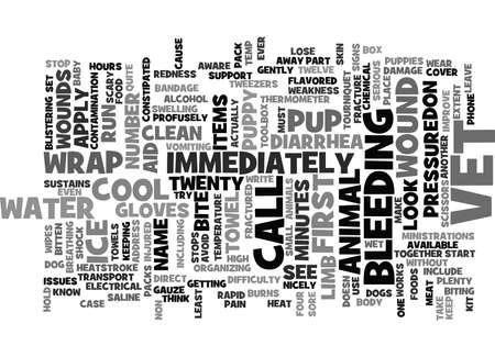 EERSTE HULP VOOR PUPPIES Tekst Achtergrond Word Cloud Concept Stock Illustratie