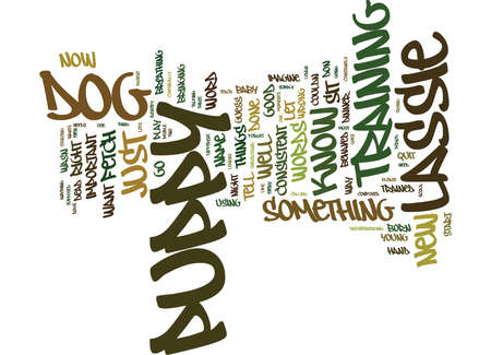 EVEN LASSIE HAD HER MOMENTS Text Background Word Cloud Concept Illustration
