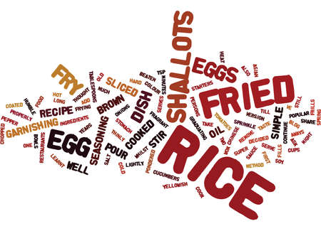 EGG FRIED RICE Text Background Word Cloud Concept
