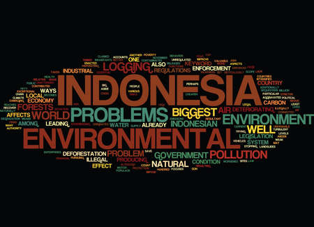 ENVIRONMENTAL PROBLEMS IN INDONESIA Text Background Word Cloud Concept Ilustrace