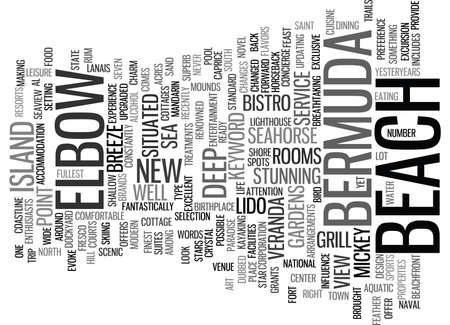 penthouse: ELBOW BEACH IN BERMUDA Text Background Word Cloud Concept Illustration