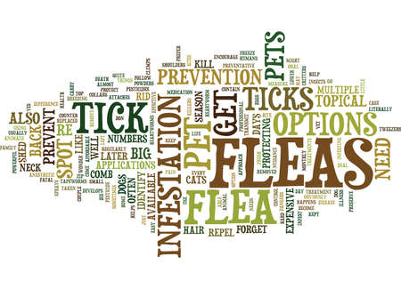 FLEA AND TICK SEASON PROTECT PETS Text Background Word Cloud Concept Illustration