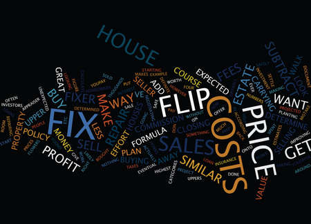 FIX AND FLIP THE FORMULA Text Background Word Cloud Concept