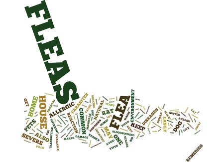 FLEAS A COMMON RESIDENT IN EVERY HOUSE Text Background Word Cloud Concept