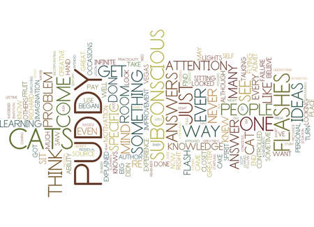 FLASH I THOUGHT I SAW A PUDDY CAT Text Background Word Cloud Concept