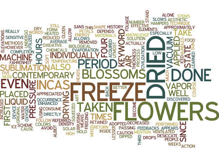 FREEZE DRIED FLOWERS Text Background Word Cloud Concept