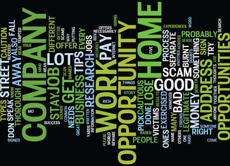 FIVE TIPS TO STAY AWAY FROM WORK AT HOME SCAMS Text Background Word Cloud Concept