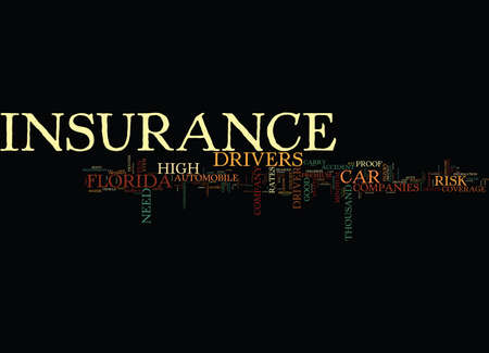 FLORIDA CAR INSURANCE Text Background Word Cloud Concept Ilustrace