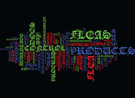 FLEA CONTROL Text Background Word Cloud Concept 向量圖像