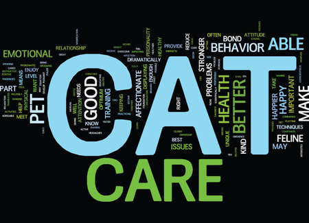 happier: GOOD CAT CARE MEANS A HAPPY CAT Text Background Word Cloud Concept