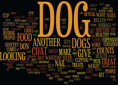 GIVE YOUR DOG A SEXY MAKEOVER Text Background Word Cloud Concept
