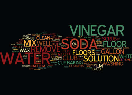 FRUGAL FLOOR CLEANERS Text Background Word Cloud Concept Иллюстрация